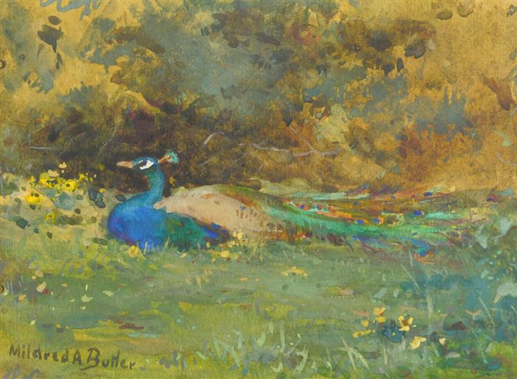 Peacock in a Garden - Mildred Anne Butler