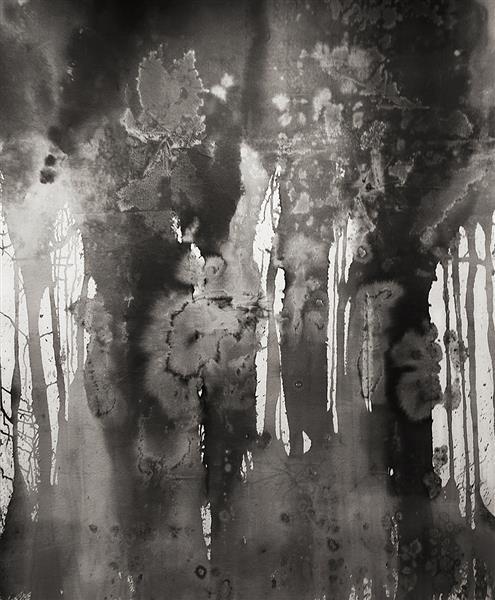 Invisibilities, 2016 - Paula Klien