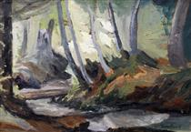 Forest - Georgi Mashev