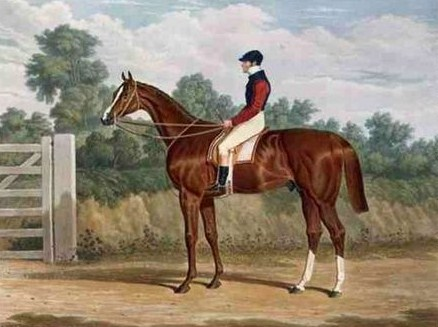 'elis', the Winner of the Great St. Leger Stakes at Doncaster, 1836 - John Frederick Herring Sr.