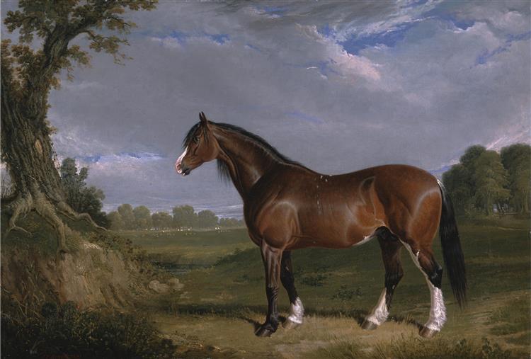 A Clydesdale Stallion, 1820 - John Frederick Herring Sr.