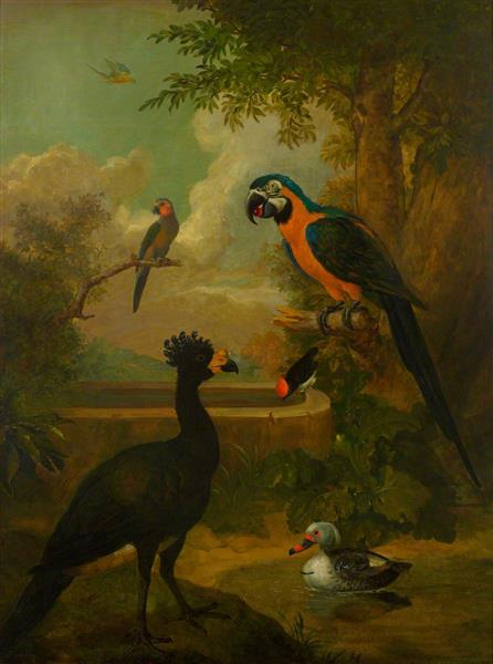 Macaw and Other Birds in a Landscape - Tobias Stranover
