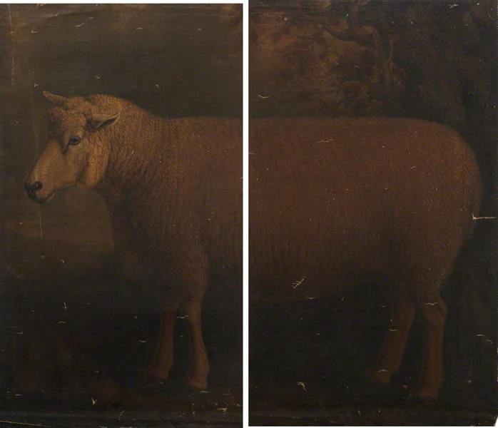 Cotswold Ram (diptych) - William Shiels