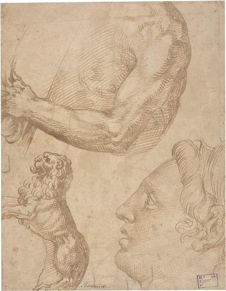 Figure Studies, c.1560 - c.1570 - Bartolomeo Passarotti