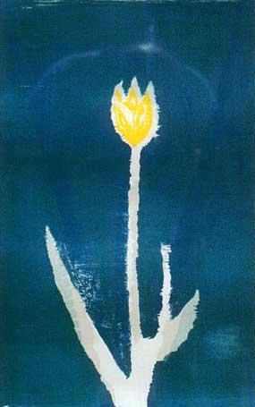 Flower - Abidin Dino