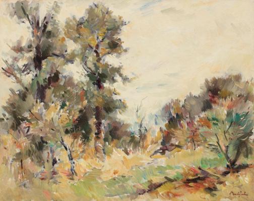 Summer Landscape - Adam Baltatu