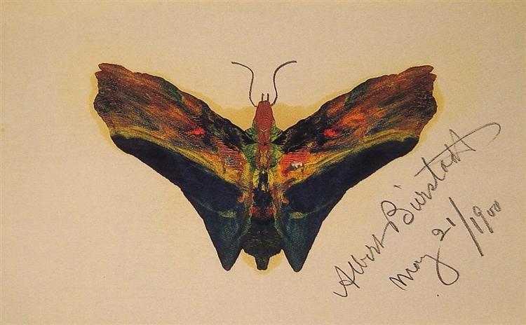 Butterfly (second version), 1900 - Albert Bierstadt