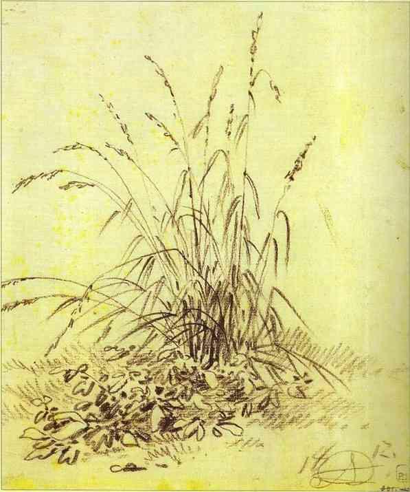 Grass, 1812