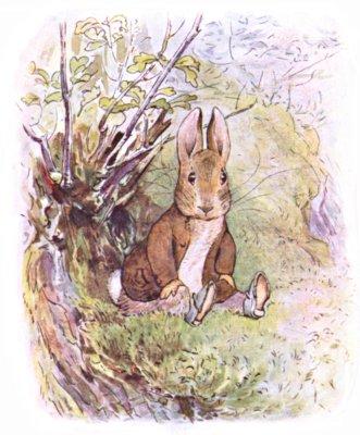Benjamin Bunny - Беатріс Поттер