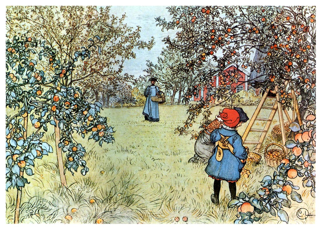 The Apple Harvest 1903
