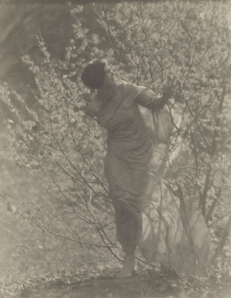 Untitled, 1917 - Clarence White