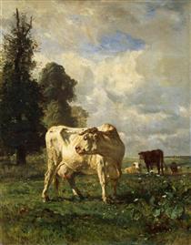 Коровы в поле - Констан Труайон