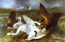 Swannery Invaded by Eagles - Эдвин Генри Ландсир