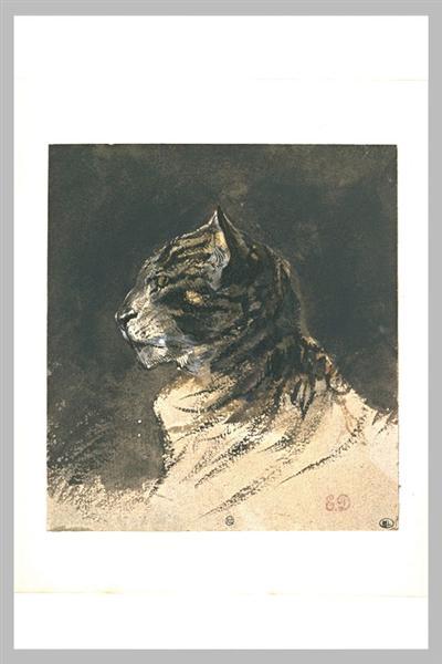 Cat head - Eugene Delacroix