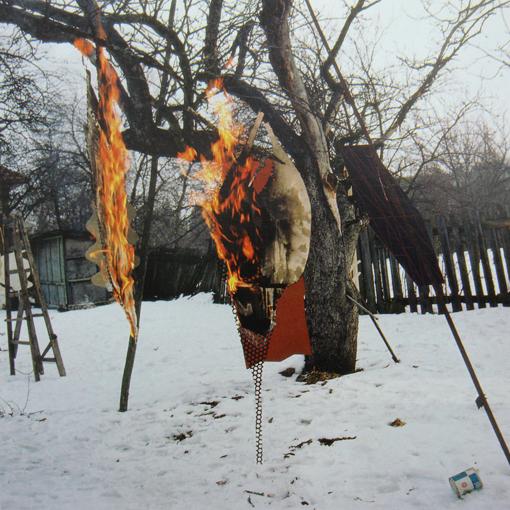 Garden (still), 1980 - Florin Maxa