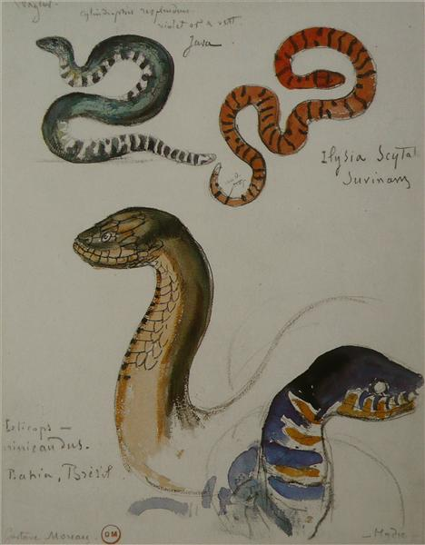Four studies of snakes - Gustave Moreau