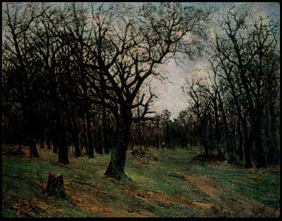 Leafless forest