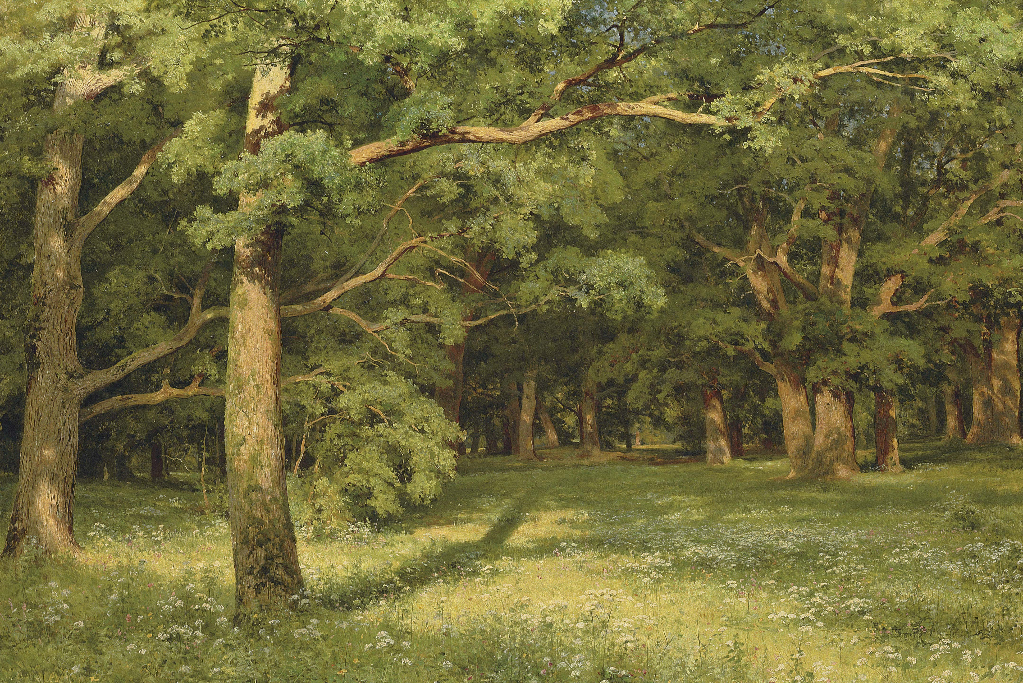 The Forest Clearing 1896 Ivan Shishkin Wikiart Org
