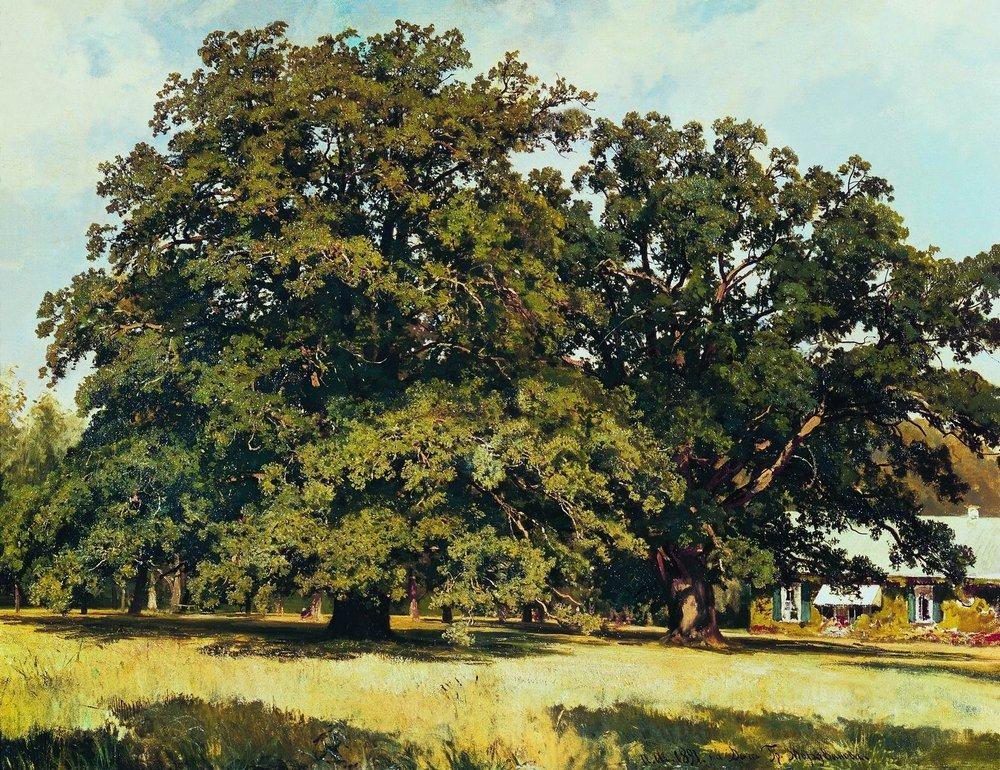 The Mordvinovo Oaks - Ivan Shishkin - WikiPaintings.org: www.wikiart.org/en/ivan-shishkin/the-mordvinovo-oaks-1891
