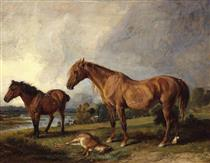 Portraits of Blackthorn, a Broodmare, with Old Jack, a Favourite Pony, the Property of E. Mundy, Esq. - Джеймс Уорд