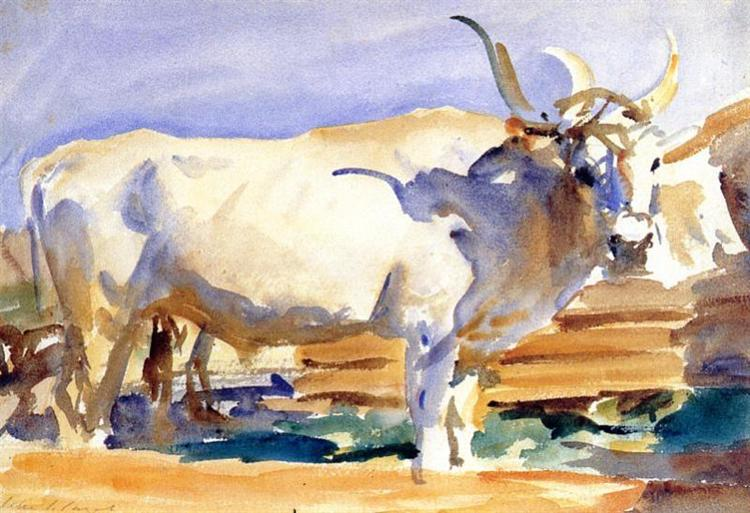 White Ox at Siena, c.1910 - John Singer Sargent