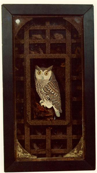 Untitled (Grand Owl Habitat), 1946 - Joseph Cornell