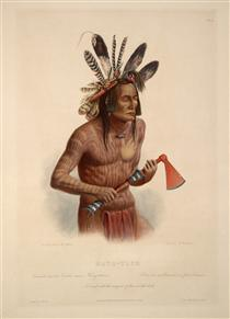 Mato-Tope, Adorned with the Insignia of his Warlike Deeds, plate 14 from Volume 2 of 'Travels in the Interior of North America' - Karl Bodmer