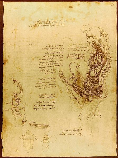 Coition of a Hemisected Man and Woman, 1492 - Leonardo da Vinci
