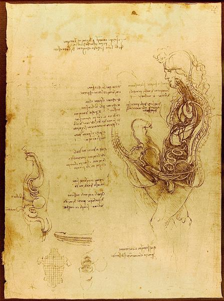 Coition of a Hemisected Man and Woman - da Vinci Leonardo