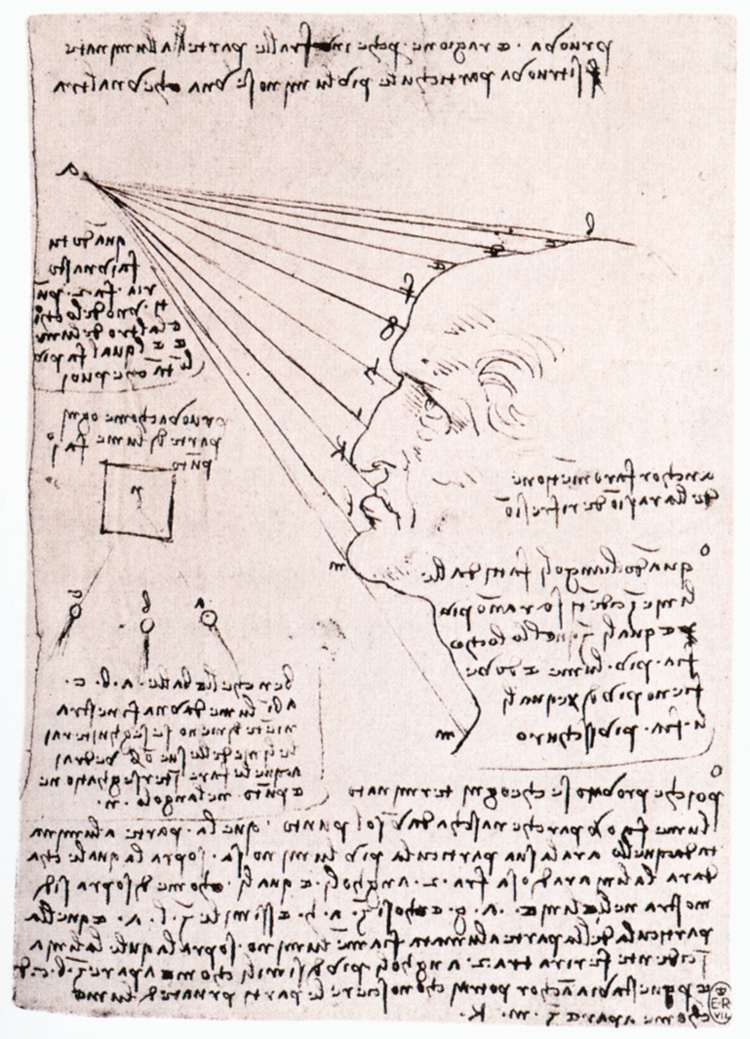 Study of the effect of light on a profile head (facsimile), 1488