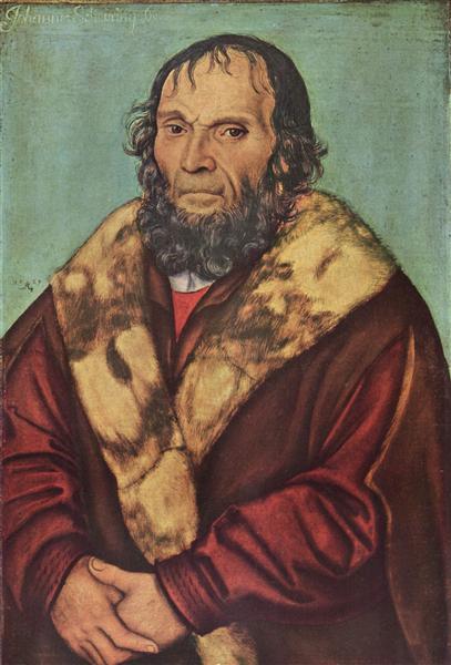 Portrait of Magdeburg theologians Dr. Johannes Schöner, 1529 - Lucas Cranach der Ältere