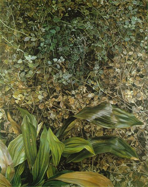 Two Plants, 1977 - 1980 - Lucian Freud