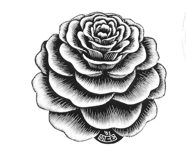 Flower, 1961 - M.C. Escher