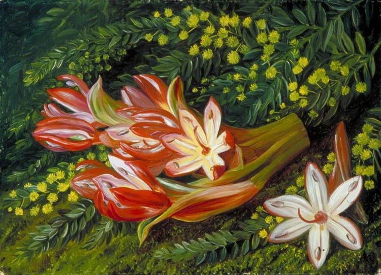 Australian Spear Lily and an Acacia, 1880 - Marianne North
