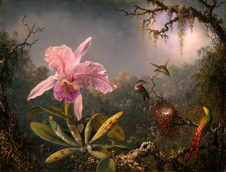 Martin Johnson Heade, Cattleya Orchid and Three Hummingbirds, 1871, National Gallery of Art, Washington DC