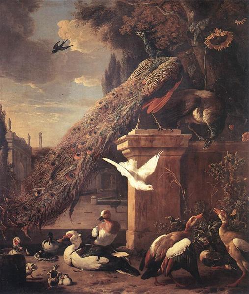 Peacocks and Ducks, 1680 - Melchior d'Hondecoeter