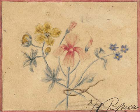 Study of flowers, 1889