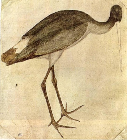Stork, 1430 - Пизанелло
