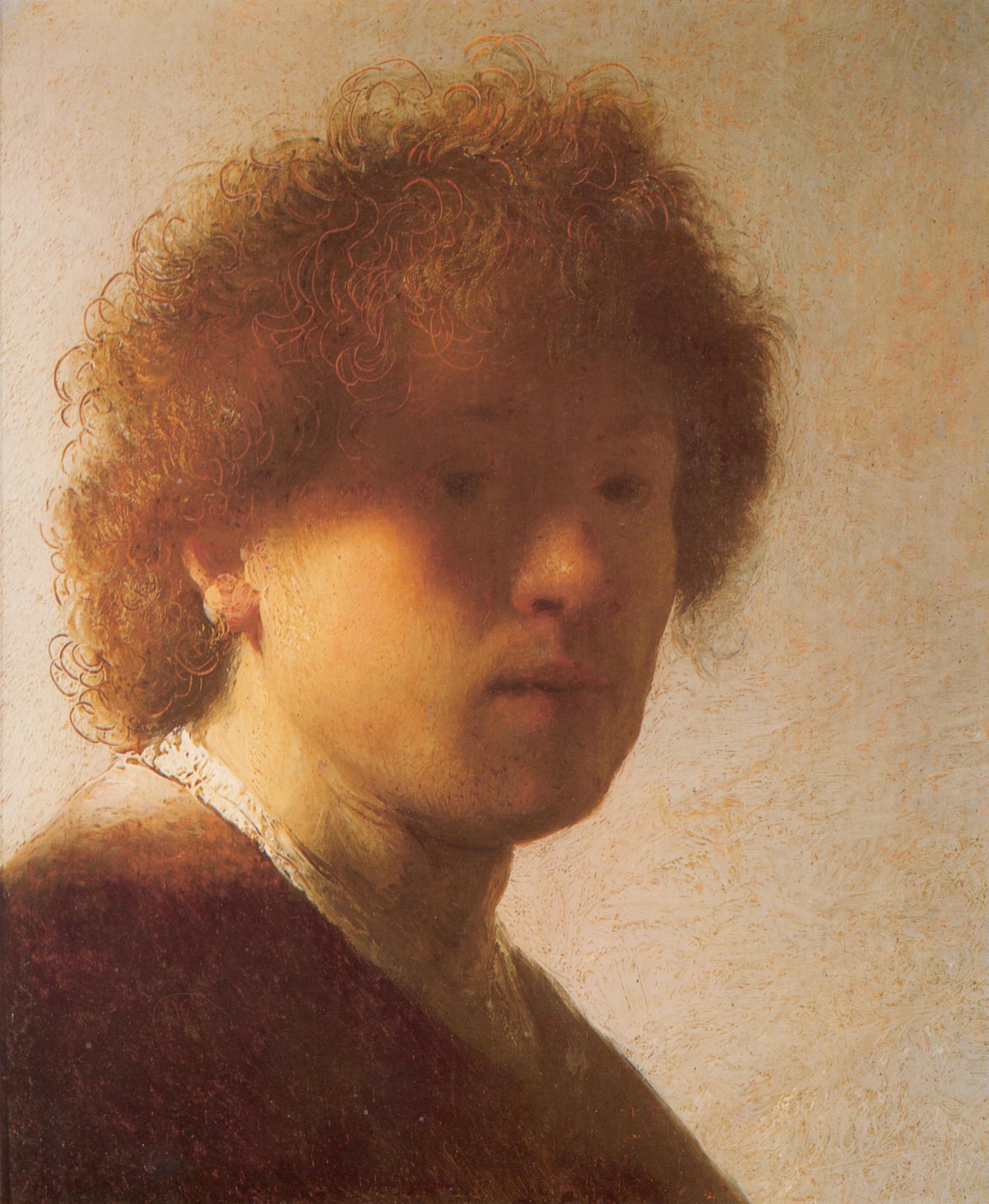 Rembrandt Van Rijn Self Portrait 1629 Self-portrait as a You...
