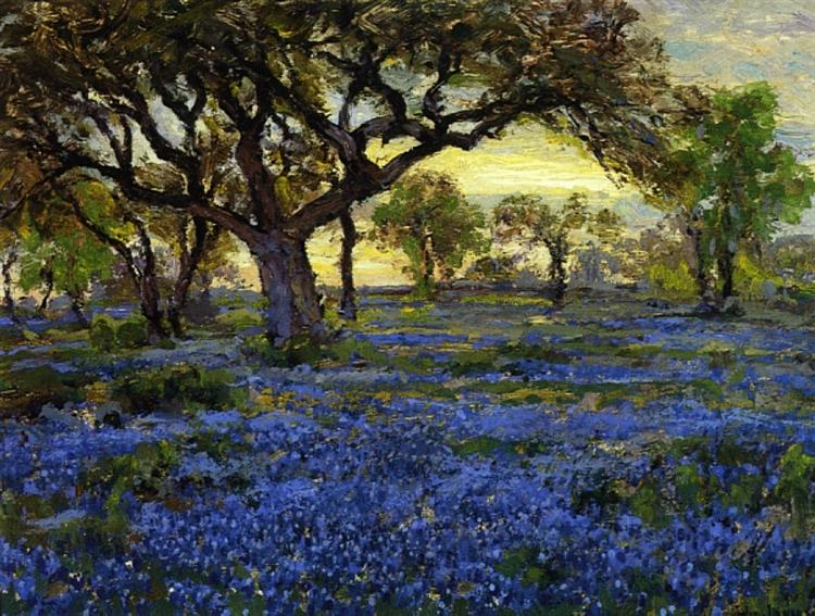 Old Live Oak Tree And Bluebonnets On The West Texas