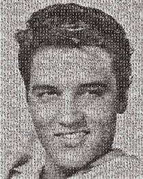 Elvis - Robert Silvers