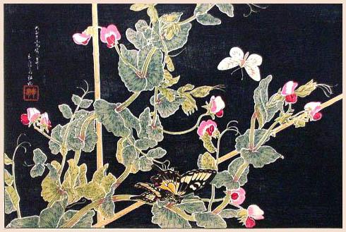 Sweetpeas and Butterflies, 1926 - Shotei Takahashi