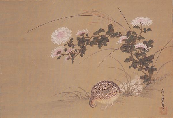 Quail and Chrysanthemums - Tosa Mitsuoki