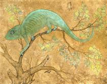 A Chameleon - Ustad Mansur