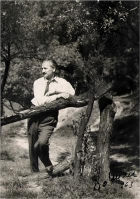 Vasile Dobrian
